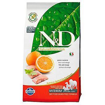 Farmina N&D Grain Free Adult Mini & Medium Fish and Orange (Dogs , Dog Food , Dry Food)