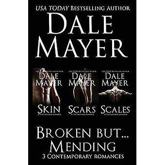 Broken But... Mending Books 13 by Mayer & Dale