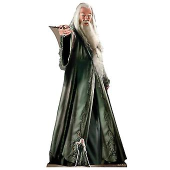 Albus Percival Dumbledore Official Harry Potter Lifesize Cardboard Cutout / Standee (2019)