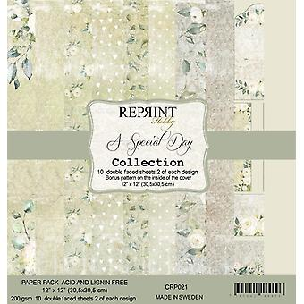 Reprint A Special Day 12x12 Inch Paper Pack