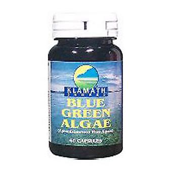American Health Klamath Shores Blue Green Algae, 500 mg, 120 Caps