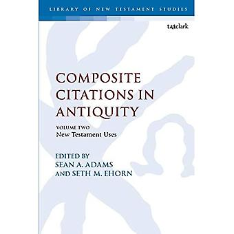 Composite Citations in Antiquity: Volume 2: New Testament Uses (Criminal Practice Series)