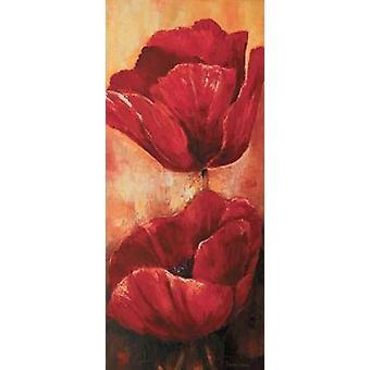 Mohnblumen ich Poster Print von Lenna Lotus