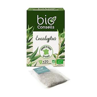 Organic Eucalyptus Infusion 20 units