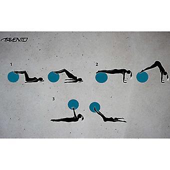 Avento Fitness-/Gymnastikbal Durchm. 75 cm zwart