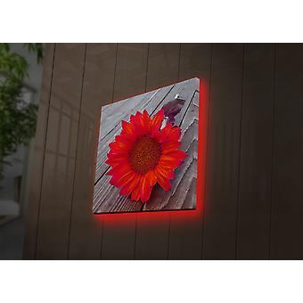 4040DACT-50 multicolor decoratieve led verlichte canvas schilderij