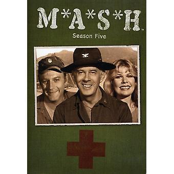 Maische-TV: Staffel 5 [DVD] USA import