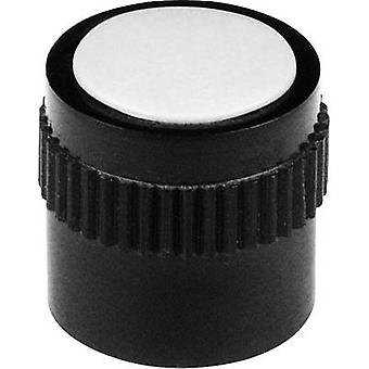 Mentor 4131.603 Control knob Black (Ø x H) 15 mm x 15 mm 1 pc(s)