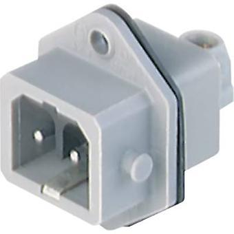 Hirschmann 932 048-106-1 Conector de rede STASEI Plug, montagem vertical Número total de pinos: 2 + PE 16 A Grey 1 pc(s)