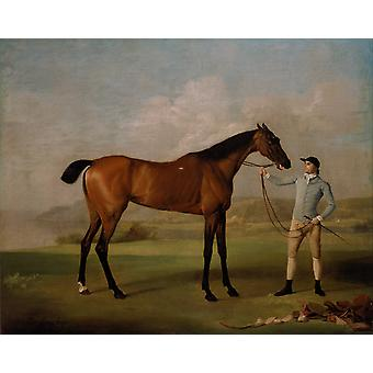 Molly Longlegs with Jockey, George Stubbs, 50x40cm