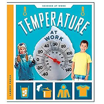 Temperature at Work (Science at Work)