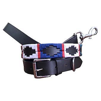 Carlos diaz äkta läder polo hund krage och bly set cdhkplc69