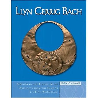 Llyn Cerrig Bach: A Study of the Copper Alloy Artefacts from the Insular La Tene Assemblage