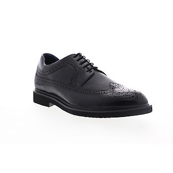 Zanzara Cesar  Mens Black Leather Casual Lace Up Oxfords Shoes