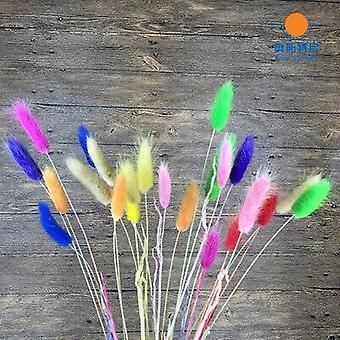 乾燥天然花ブーケイエローカラーウサギテールグラス花束