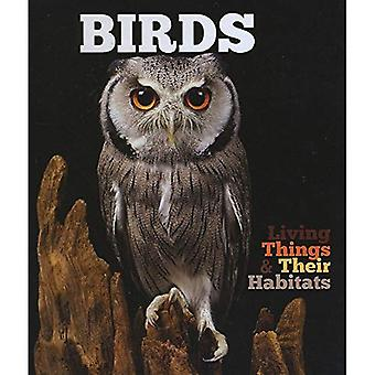 Birds (Living Things and Their Habitats)