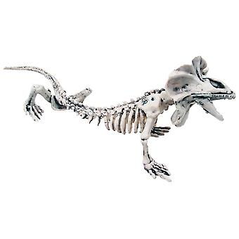 Skeleton Lizard 16 inches