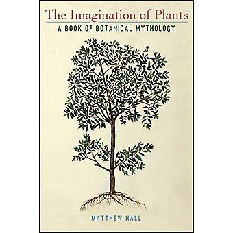 The Imagination of Plants - A Book of Botanical Mythology by Matthew H