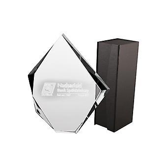 3D gegraveerde glazen trofee met verpakking - 19,5 cm