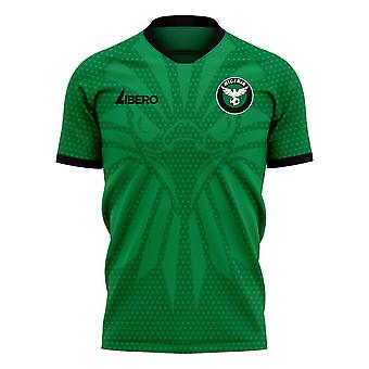 Nigeria 2020-2021 Home Concept Football Kit (Libero)