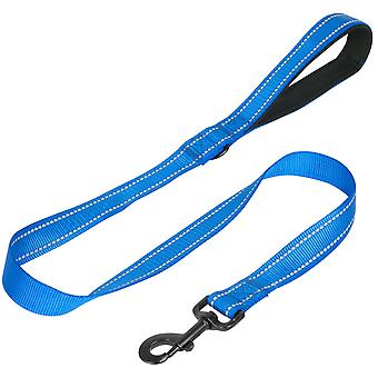 1m Dog Lead - Blue