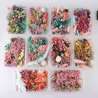 1 Box Random Real Dried Flower Dry Plants For Aromatherapy Candles