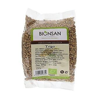 Wheat in Organic Grain 500 g