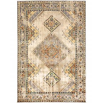 4' x 6' Gray and Beige Aztec Pattern Area Rug