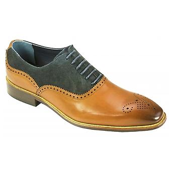 Azor Nazaro Formal Leather Oxford Suede Shoes - Tan/navy