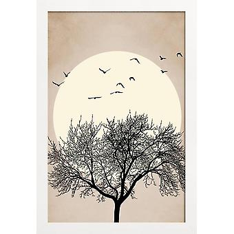 JUNIQE Print -  Dreamers Bright - Bäume Poster in Cremeweiß & Schwarz