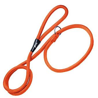 Gloria Pets Orange Training Collar and Leash