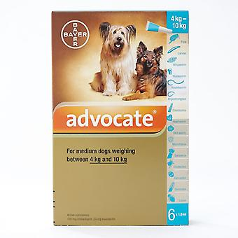Advocate for Medium Dogs  4-10Kg (8.8-22lbs), 6 Pack