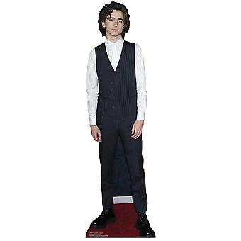 Timothee Chalamet Waistcoat Style Mini Cardboard Cutout / Standee