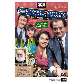 Alleen dwazen & paarden - alleen dwazen & paarden: Series 7 [DVD] USA importeren