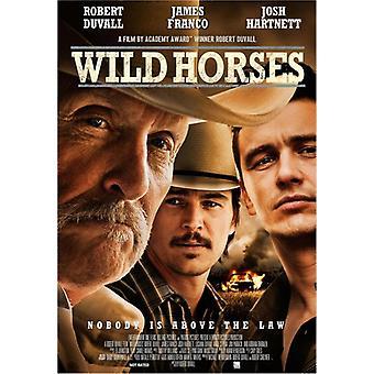 Wild Horses [DVD] USA import