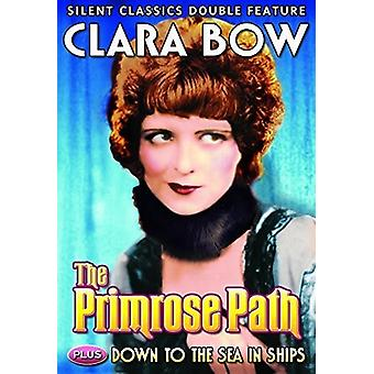 Clara Bow Double Feature: Primrose Path / Down [DVD] USA import