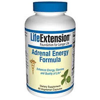 Life Extension Adrenal Energy Formula, 60 Vcaps