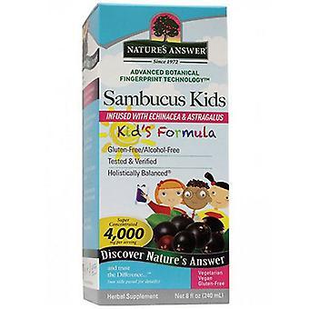Nature's Answer Sambucus Kids Formula, Alcohol Free, 8 Oz