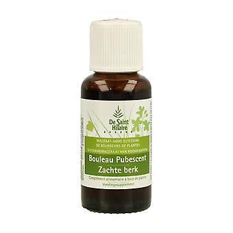 Organic Pubescent Birch Macerate 30 ml