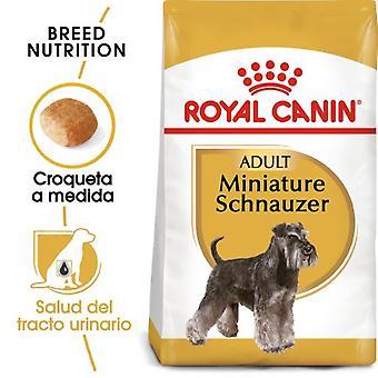 Royal Canin Miniature Schnauzer Adult Pienso para Perro Adulto de Raza