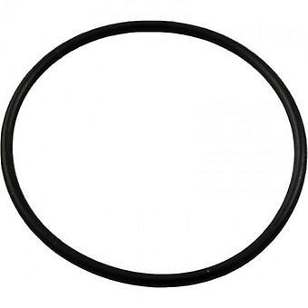 Pentair 192323 кольцо для бассейн или спа де фильтра и насоса