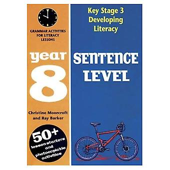 Developing Key Stage 3 Literacy: Sentence Level Year 8: Grammar Activities for Literacy Lessons (Developings)