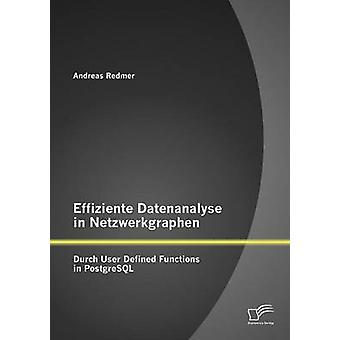 Effiziente Datenanalyse in Netzwerkgraphen Durch User Defined Functions in PostgreSQL by Redmer & Andreas