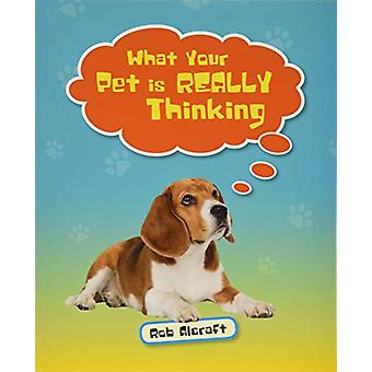 Reading Planet KS2 - What Your Pet is REALLY Thinking - Level 2 - Merc