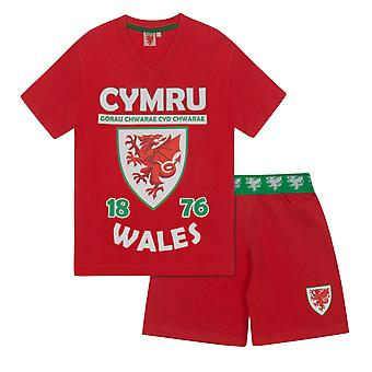 Wales Cymru FAW Official Football Gift Boys Short Pyjamas