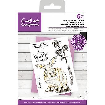 Crafter's Companion Clear Frimärken Vissa Bunny älskar dig