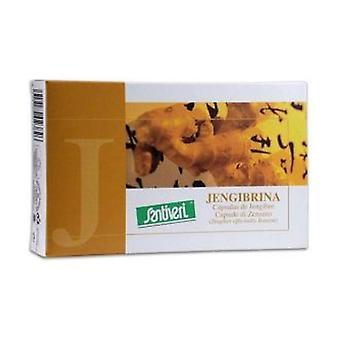 Gingebrin 60 capsules