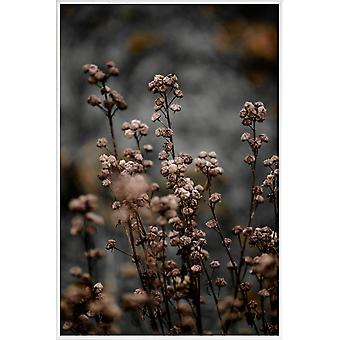 JUNIQE Print - Unknown 5 - Flowers Poster in Brown