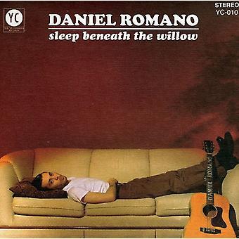 Daniel Romano - Sleeps Beneath the Willow [CD] USA import