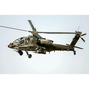 Los E.E.U.U. Ejército Europa AH - 64D Apache helicóptero Poster Print por Timm ZiegenthalerStocktrek imágenes